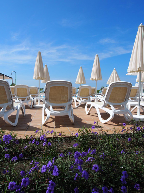 Loungers-by-pool-at-Riu-Playa-Blanca
