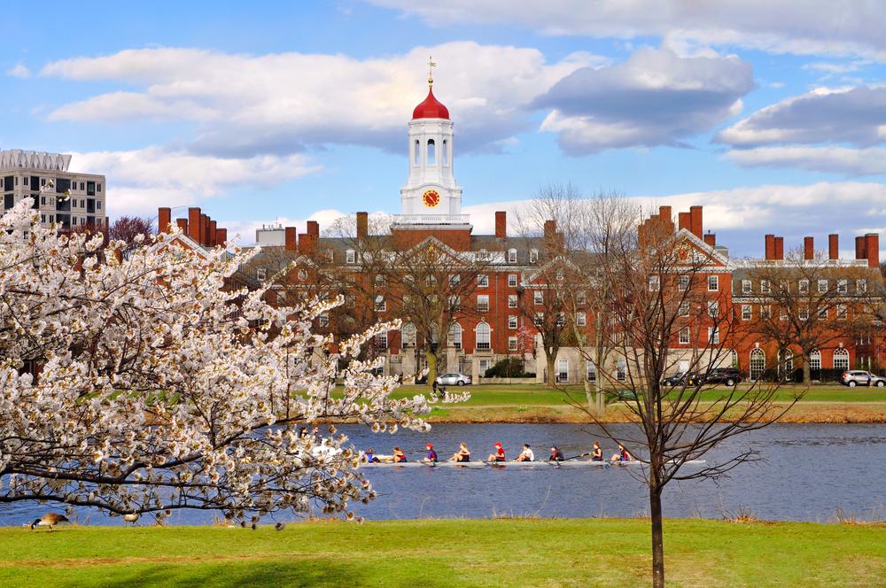 Travel Freely - Boston 5