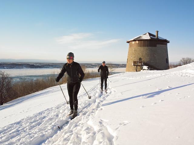 the frozen snowshoe urban dictionary