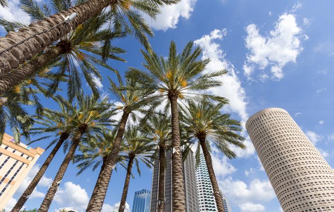 Porter To Begin Florida Flights Dec 19