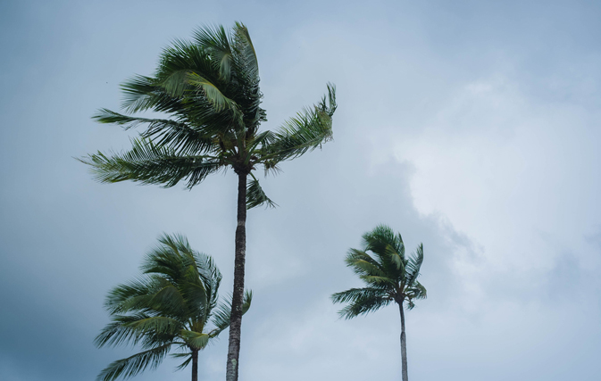 CTO issues island-by-island damage report in the wake of Irma as Floridians...