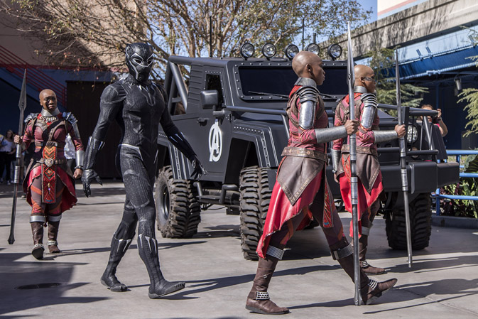 Black Panther and the Royal Guards