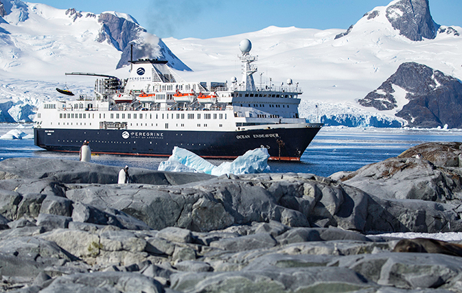Intrepid Group, Chimu team up for new Antarctic operations
