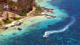 Agent incentives with Sunwing's destination of the month: Jamaica
