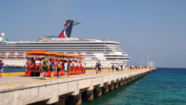 Carnival online travel agent eCollateral Library
