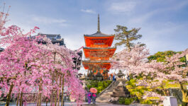 Cherry blossoms ready to bloom on NARAT's upcoming Japan fam