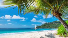 Register now for Jamaica's cross-Canada product seminars