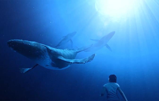 Maui-Ocean-Center-Takes-Virtual-Plunge-into-Underwater-World-of-Hawaiis-Humpbacks