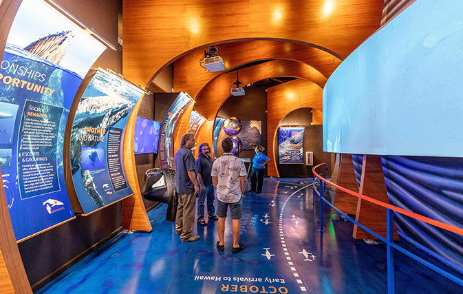 Maui-Ocean-Center-Takes-Virtual-Plunge-into-Underwater-World-of-Hawaiis-Humpbacks_3
