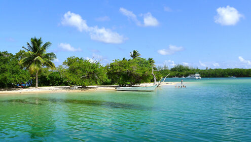 Explore the Extraordinary Tobago