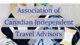 Travel agents help get word out about industry's 'tailspin'