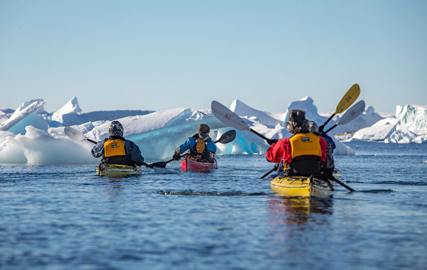 Intrepid launches limited-time Antarctica sale