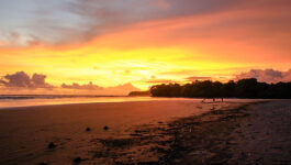 Planeterra's new 'PACT' prioritizes community tourism development in Panama