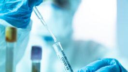 WestJet, YVR release results of rapid antigen testing study