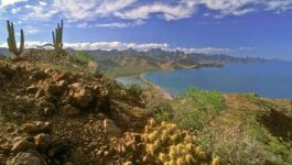 Agents can win hotel stays with the Loreto, Mexico Specialist Program