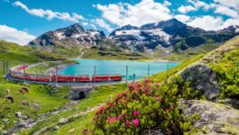 Sign up for the new Swiss Travel System Excellence Program