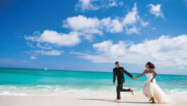 """""""There is a change in the air"""": Destination weddings seeing some traction, says DWHSA"""