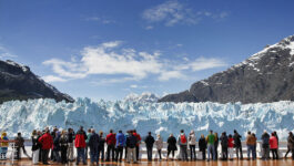 """""""This pandemic has created unprecedented decisions"""": One agent's take on the 2021 Alaska cruise season"""