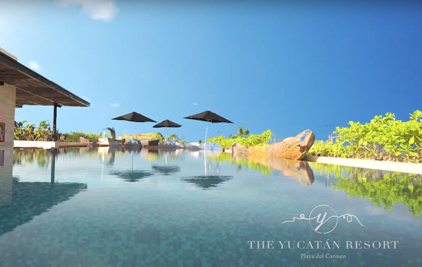 The Ultimate Experience on 5th Ave, Playa del Carmen