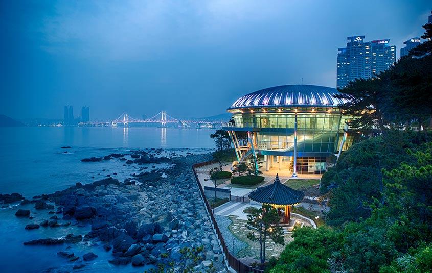 Register now to become a Korea Destination Specialist
